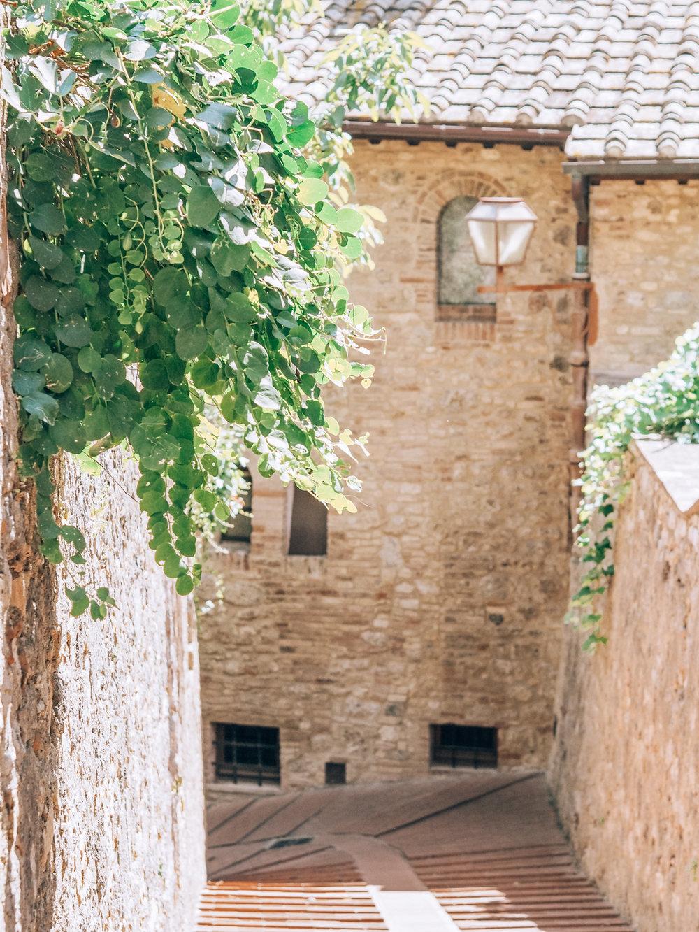 Tuscany trip-98.jpg