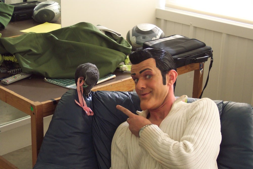 Stefan Karl and the African Gray