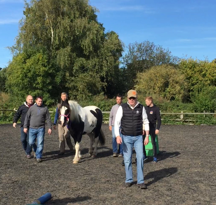 'Goal Orientation' with Oliver, Holistic Horse and Pony Centre, UK