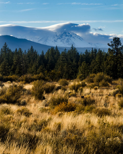 Our Time in Bend — Nicholas Franko