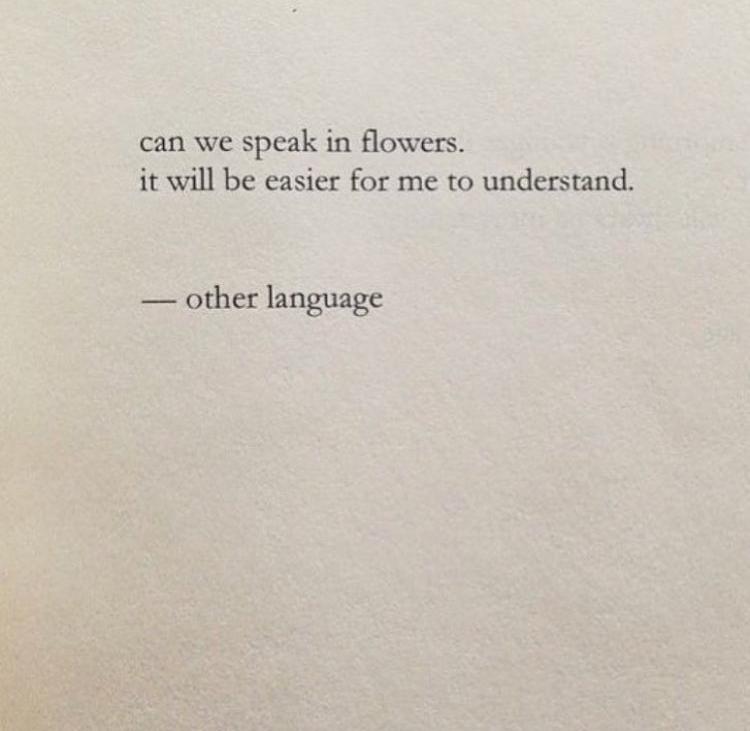 Other-Language.jpg