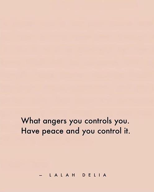 angers-controls.jpg