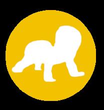 bebe-jaune.png