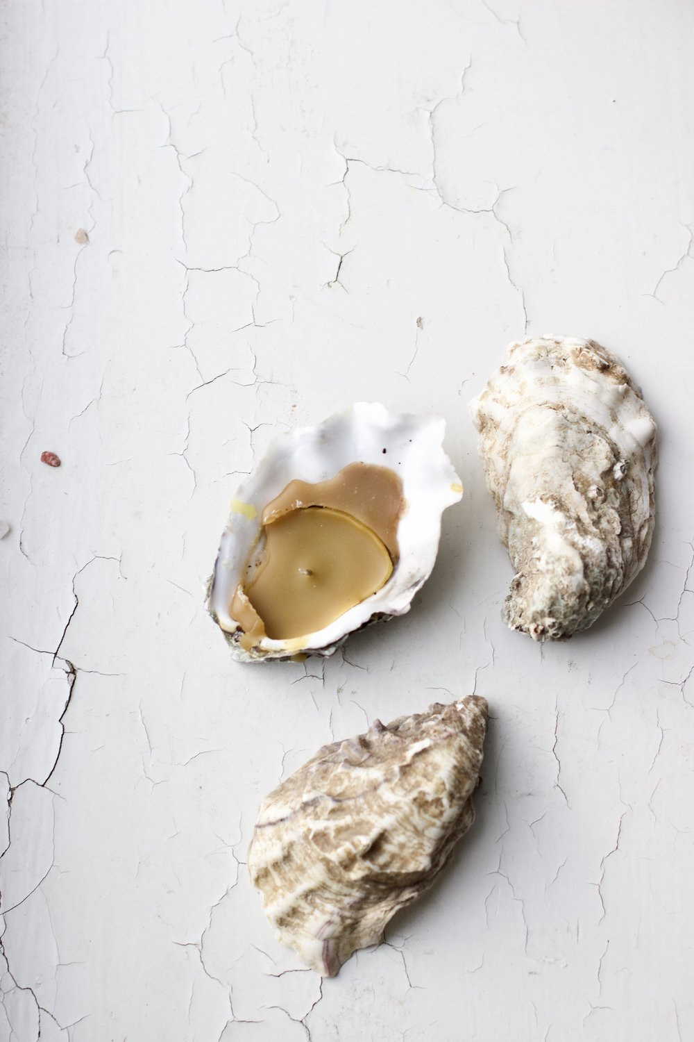 Easy Oyster Candle DIY
