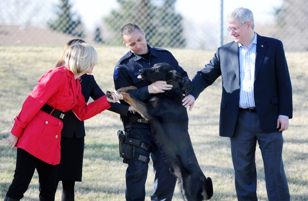 Prime Minister Stephen Harper, with his wife Laureen and Health Minister Rona Ambrose, meet Quanto's handler Const. Matt Williamson and his new dog Ozzie at the EPS Canine Unit. Harper announced the introduction of Quanto's Law in Edmonton on Monday May 12, 2014. Photograph by: John Lucas , Edmonton Journal