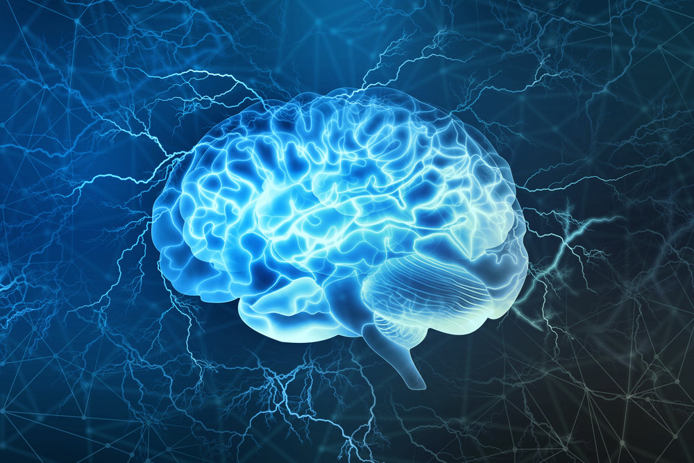 Neuroplastic1.jpg