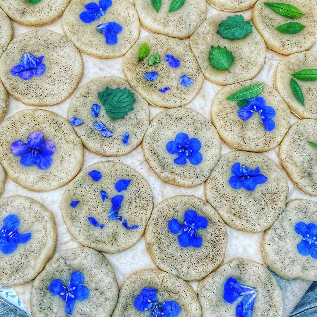 Black sesame shortbread cookies with nasturtiums and lemon verbena fresh from the garden! Inspired by the ever fabulous @loriastern