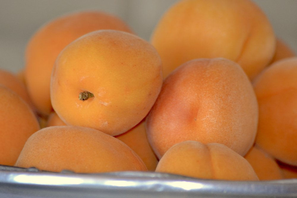 Apricots have a thin skin which makes for easy work. No peeling off pesky skin! Just rinse, slice, and eat.