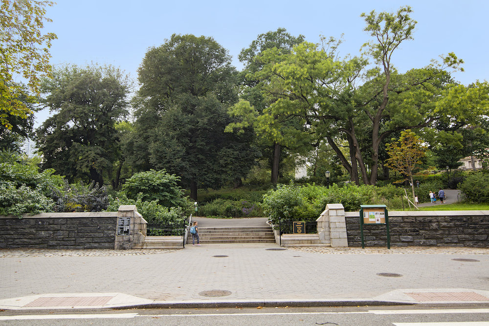 169 Washington Park Fort Greene Shot.jpg