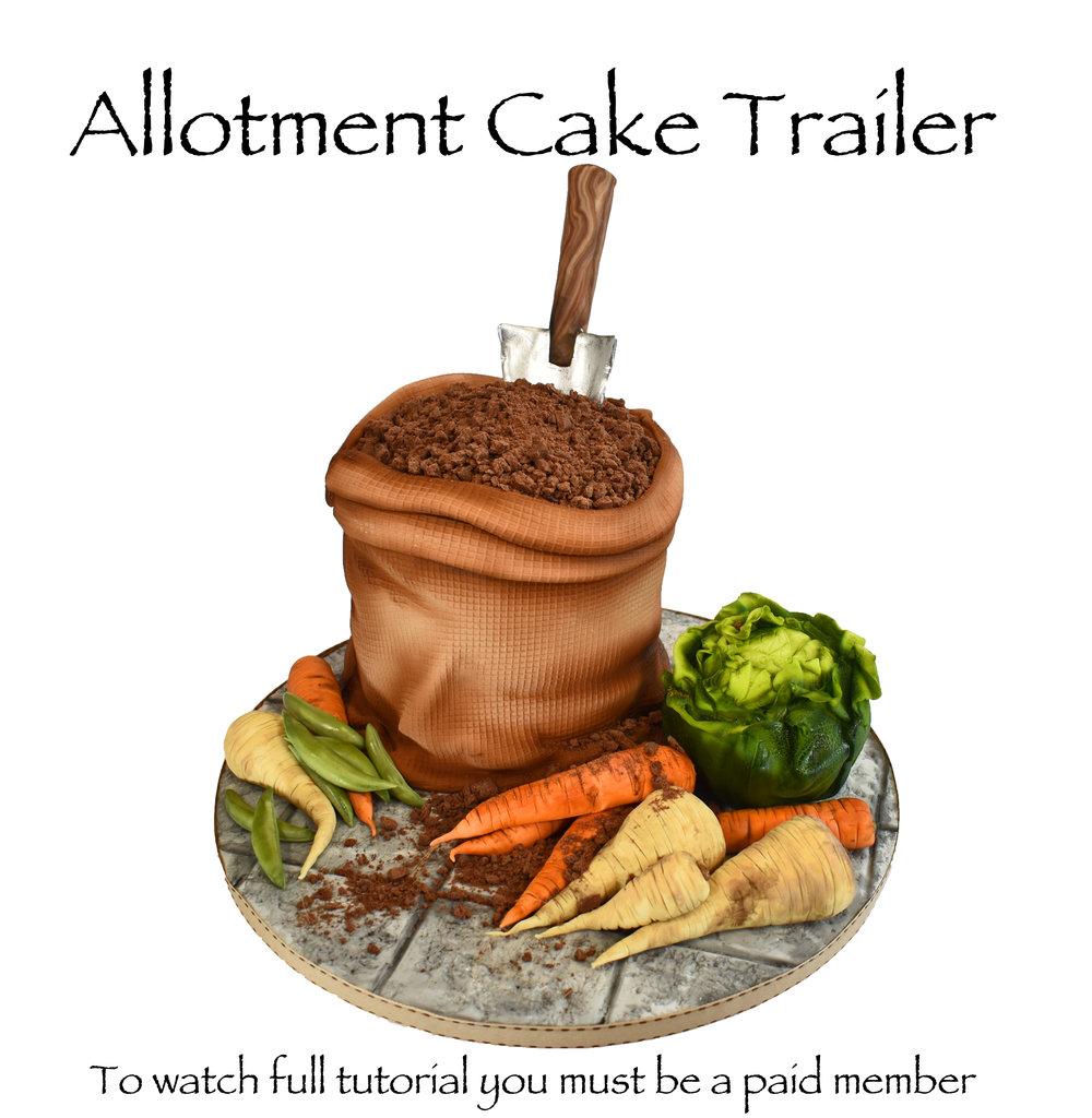 ALLOTMENT CAKe promo.jpg