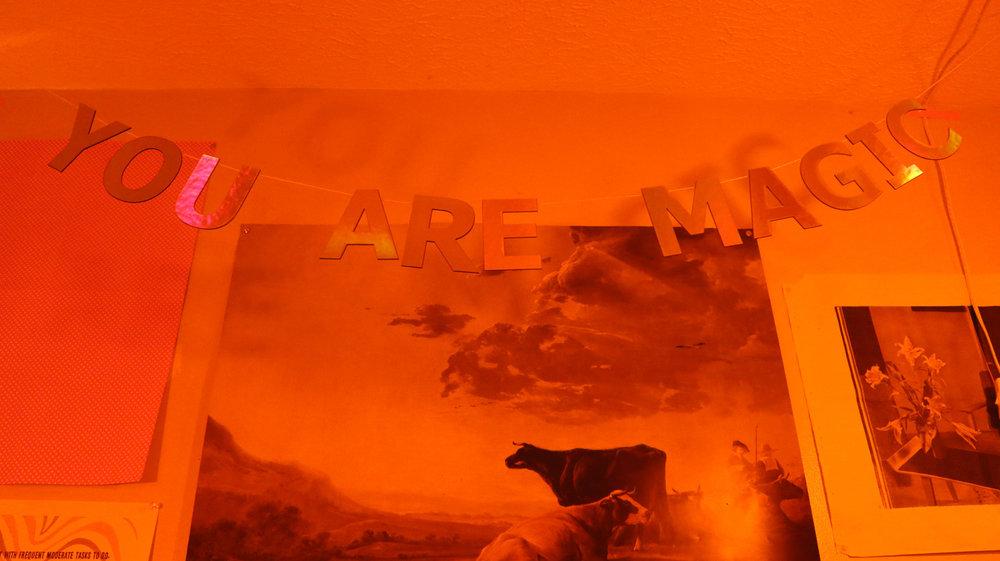 The-Orange-Party-4.JPG