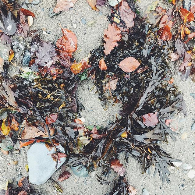 An autumn beach wreath 🐚