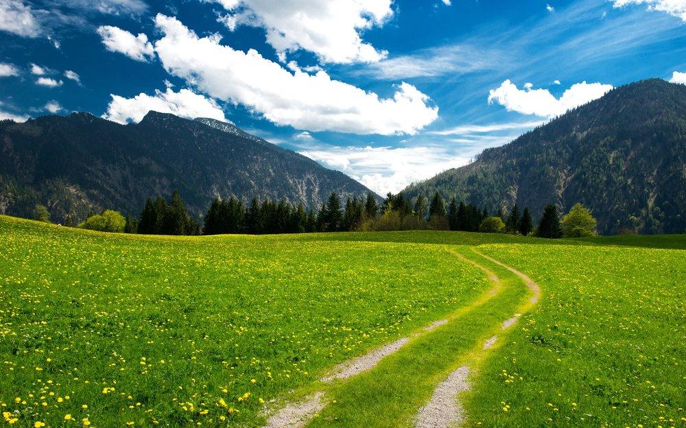 Bavarian-Alps-(Germany).jpg