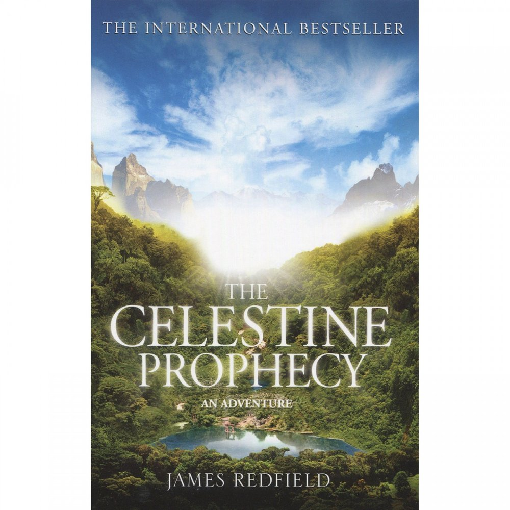 The Celestine Prophecy - James Redfield  - This book looks at the world through the exchange of energy.  It helps shift paradigms to encompass a bigger collective unconsciousness and how we are all connected.