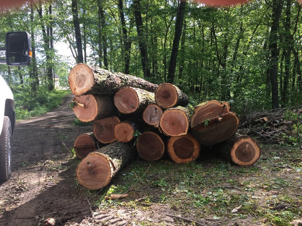 Pile of marketable timber from a recent lot clearing. If you're not getting paid for your timber, give us a call.