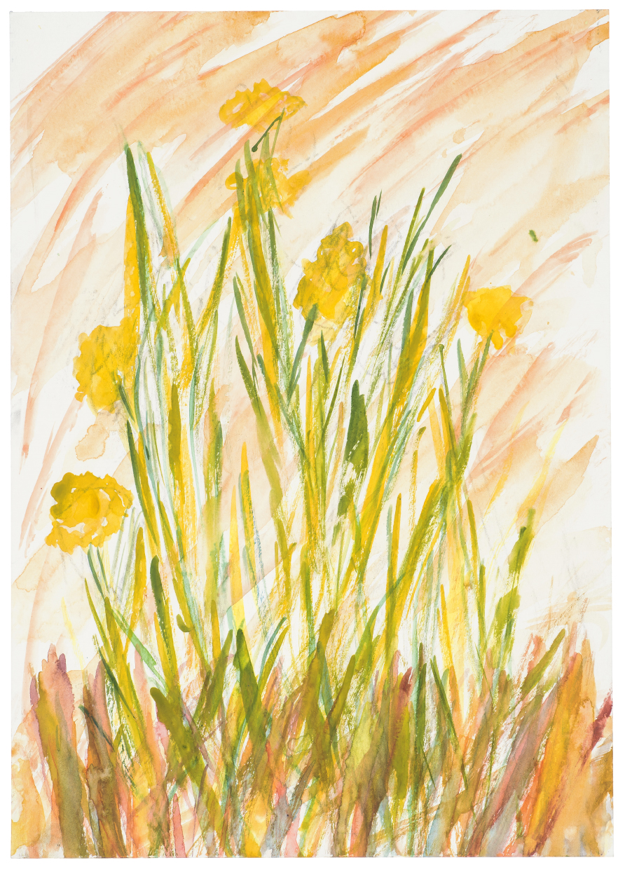 Spring Daffs by Kevin Seddon (Watercolour and crayon).jpg