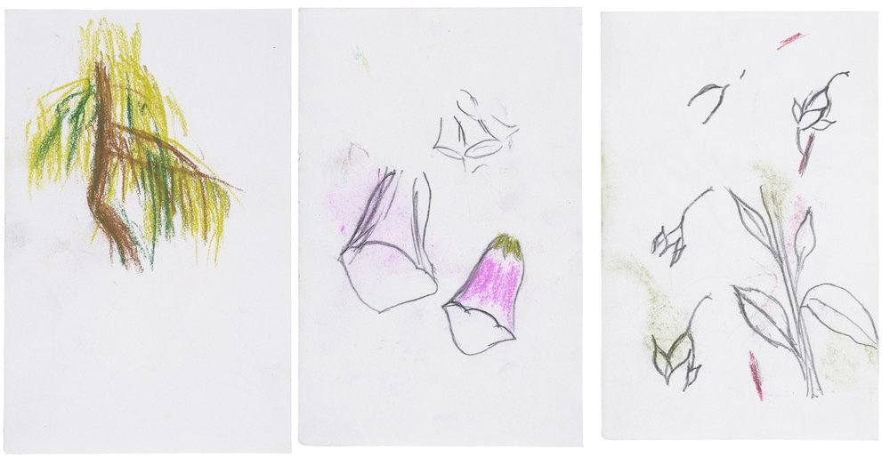 Triptych   Stephen Goldsmith  Pencil and crayon