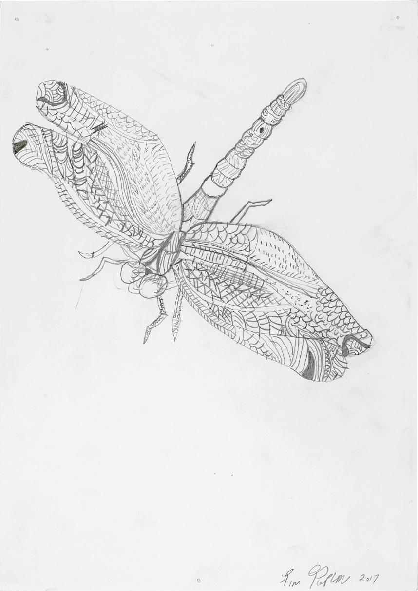 Untitled   Tim  Pencil