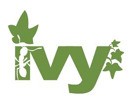 Apache Ivy Logo