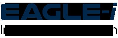 Eaglei_Logo.png