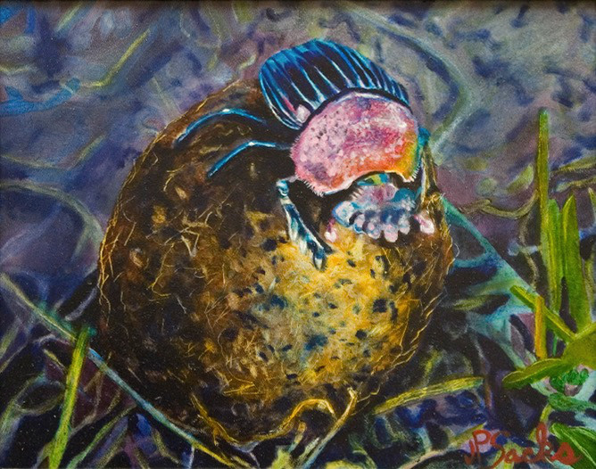 Dung Beetle Saves Serengeti, Oil, 8Hx10W, $295, Framed