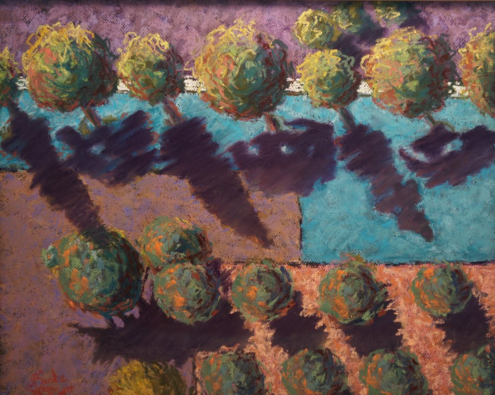 Aerial Orchard after Katrina Ring, Pastel, 12.75Hx19.25H, NFS, Framed