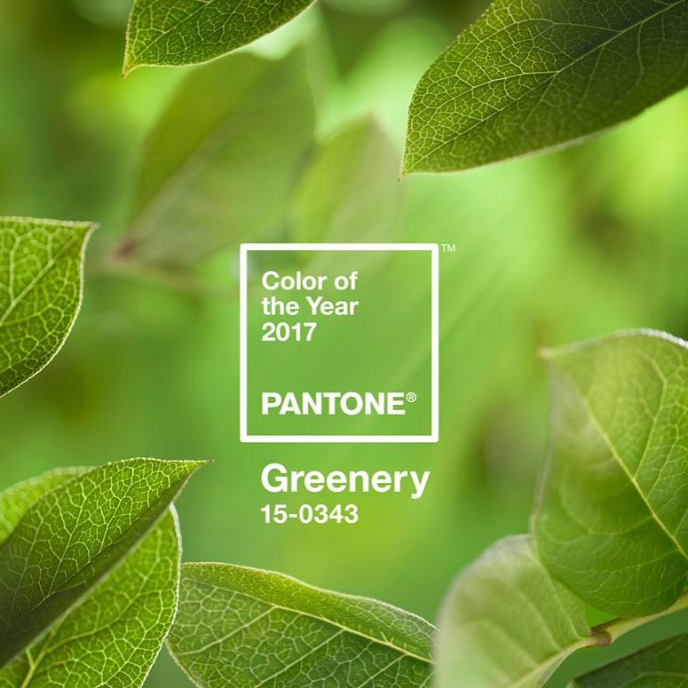 Pantone Greenery 1.jpeg