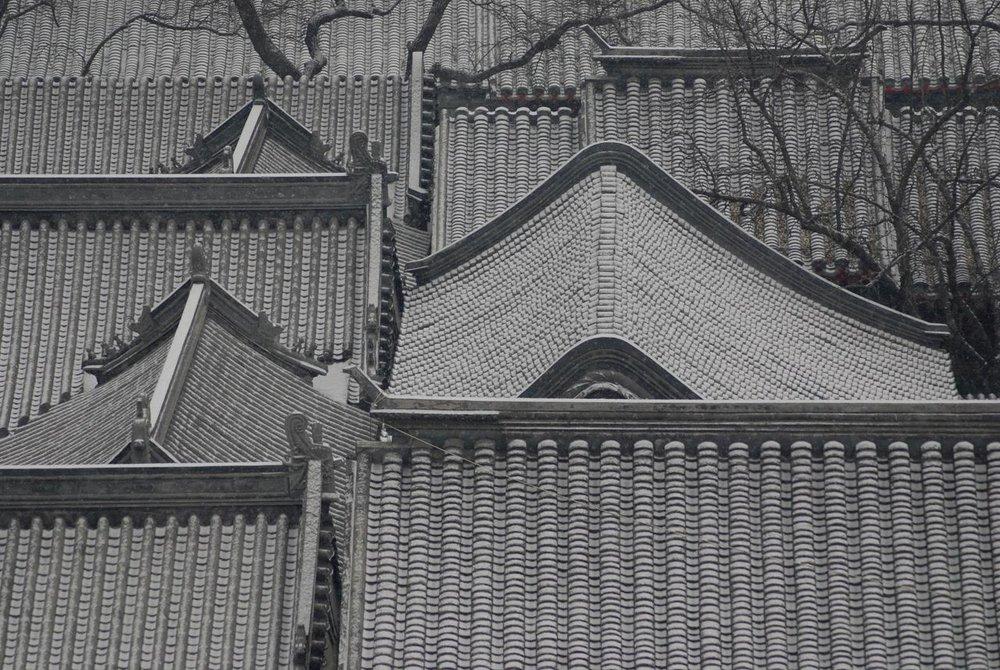 cover roof.jpg