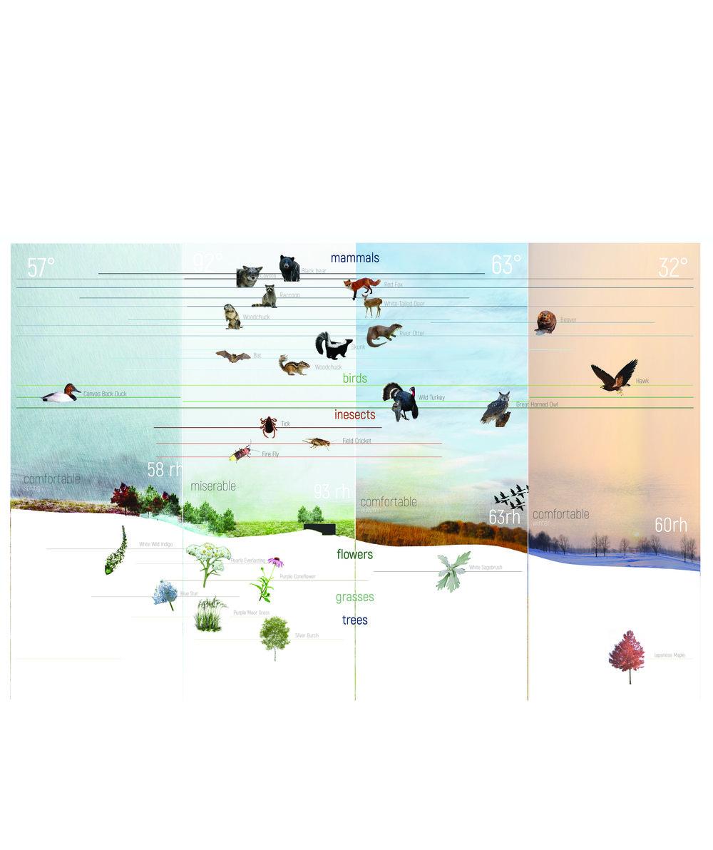 07 Ecology Diagram 20170714.jpg