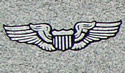 Wings with a crest - U.S. Airforce Pilot