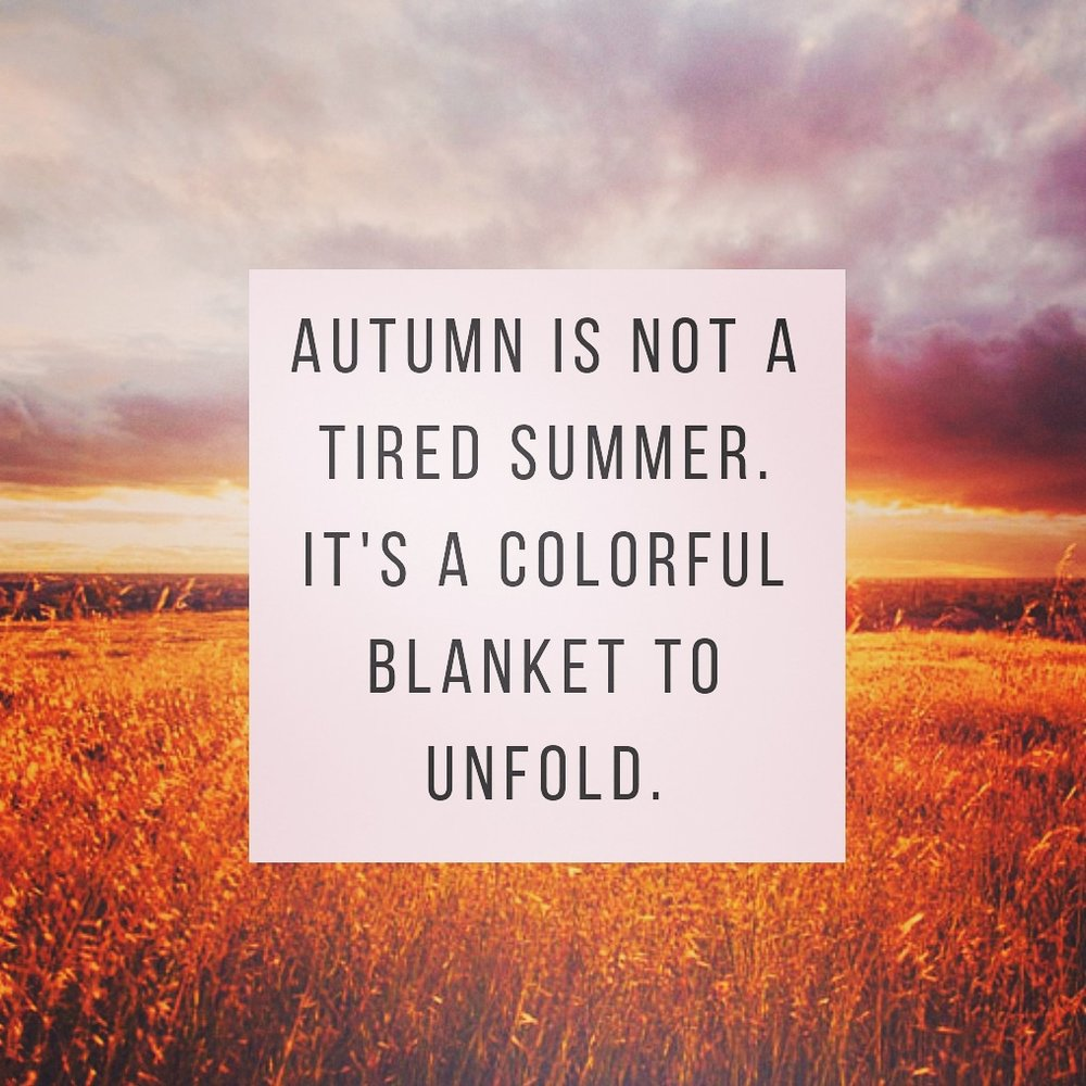 autumn fall Herbst colors enjoy genießen summer Sommer