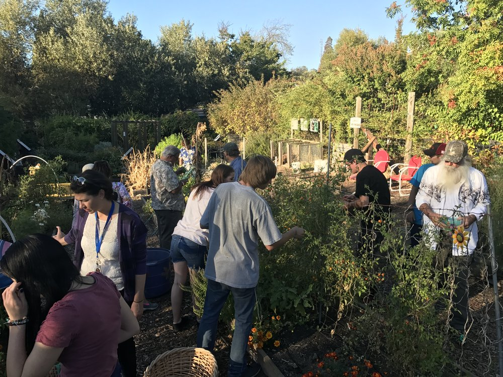 "Monthly ""Group Gathering""September's Gathering took place at the Master Gardener Demo Garden in San Andreas"