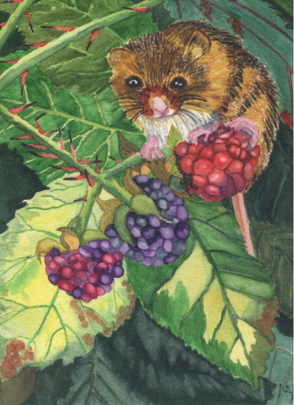 Autumn Bounty - Mary Moorhouse