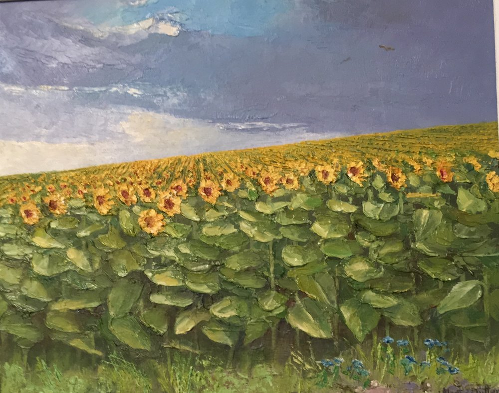 Buzzards above the Sunflowers