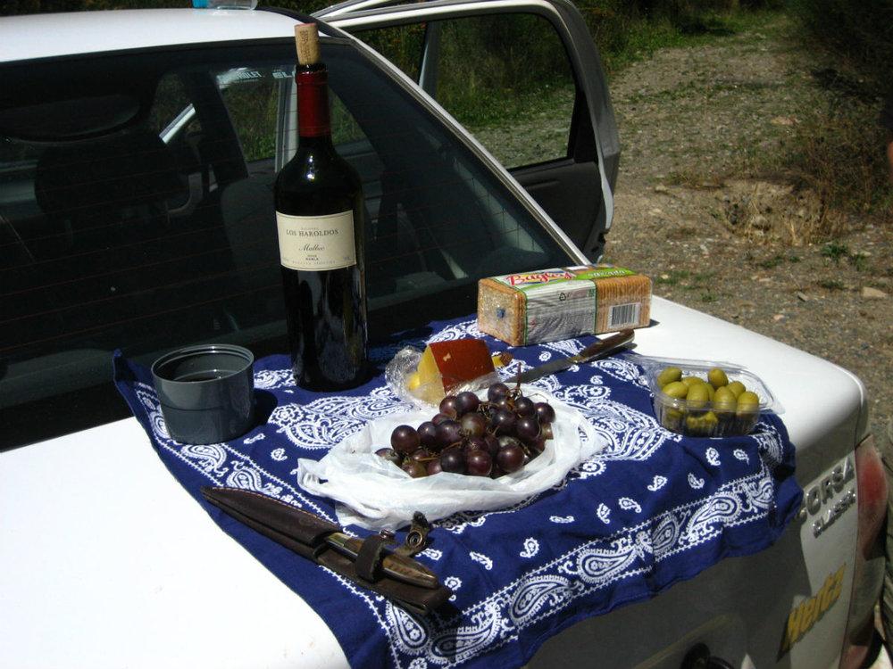 wine_argentina picnic.jpg