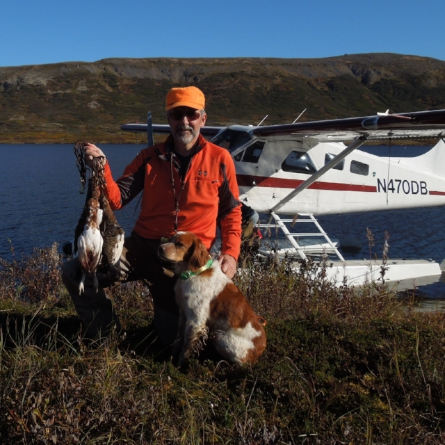In 2014 we hunted ptarmigan in a down year but managed to collect a few birds.  I've wanted to go back when the numbers are up ever since.