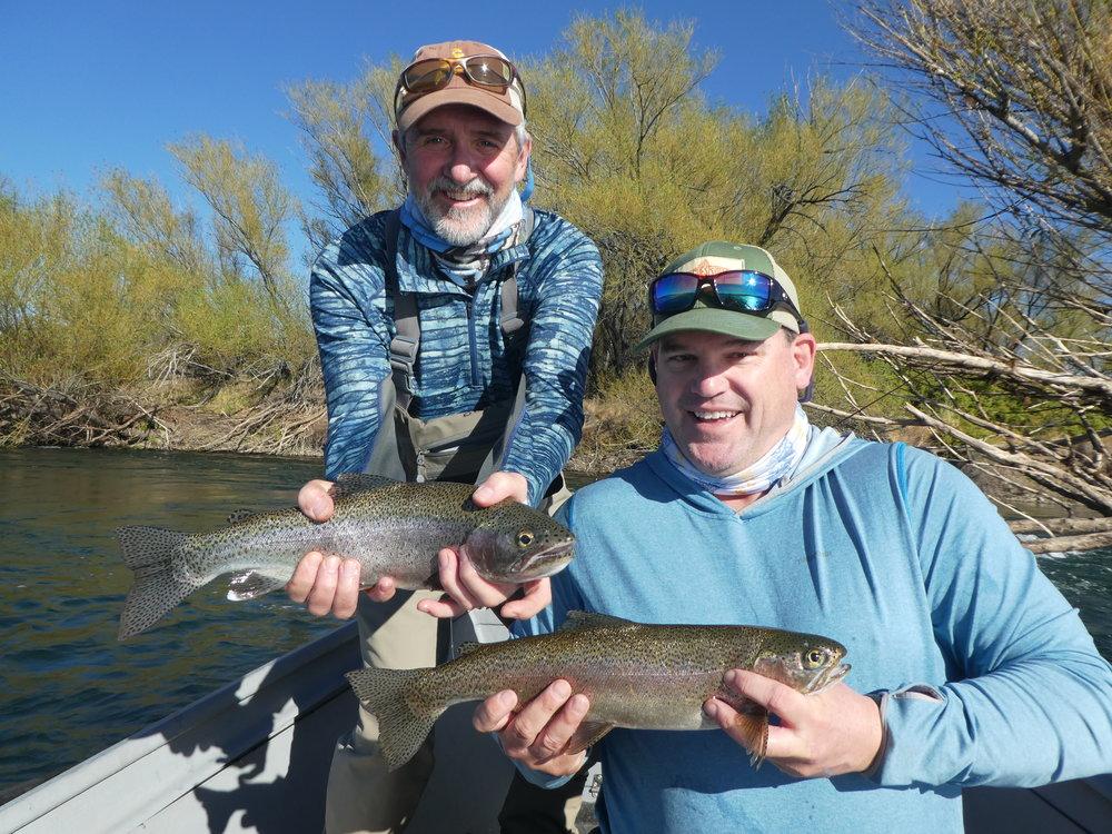 A healthy pair of Collon Cura rainbows.