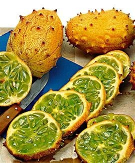 Kiwano, or Jelly Melon, is a African sweet cucumber varietal.