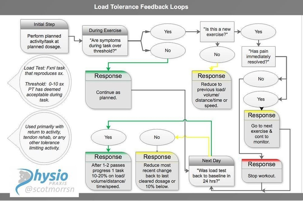 Load Tolerance Feedback Loops.jpg