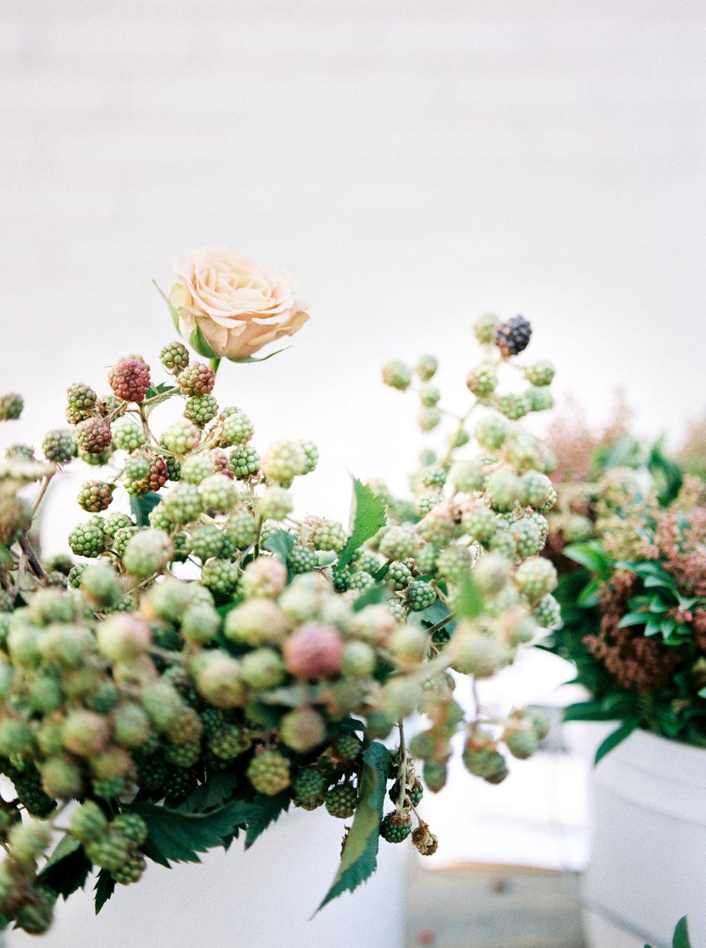 Rachel-Carter-Photography-Denver-Colorado-Film-Florist-Photographer-50.jpg