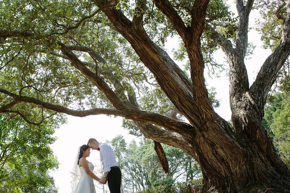 auckland-newlyweds.jpg
