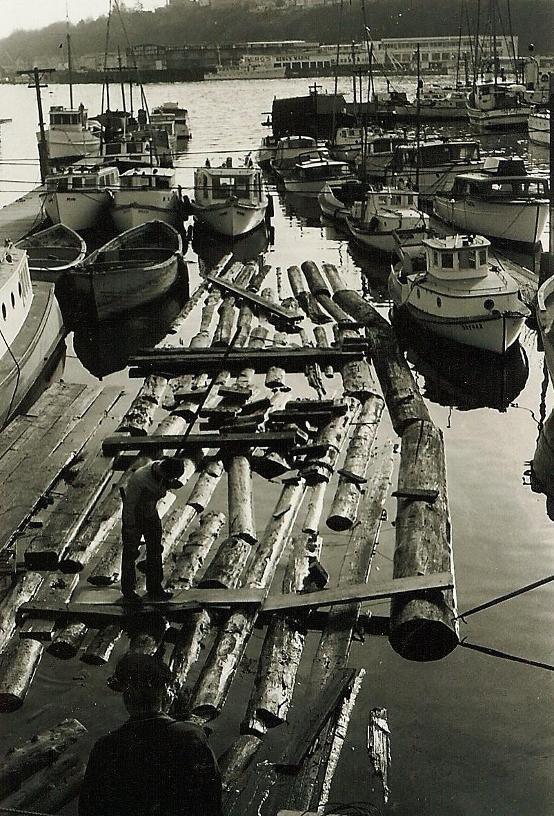 Fremont Boat Dock 1 rebuild.JPG