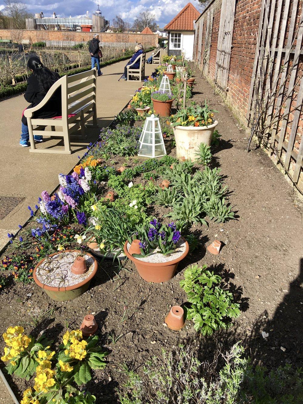 Hampton Court Kitchen Garden