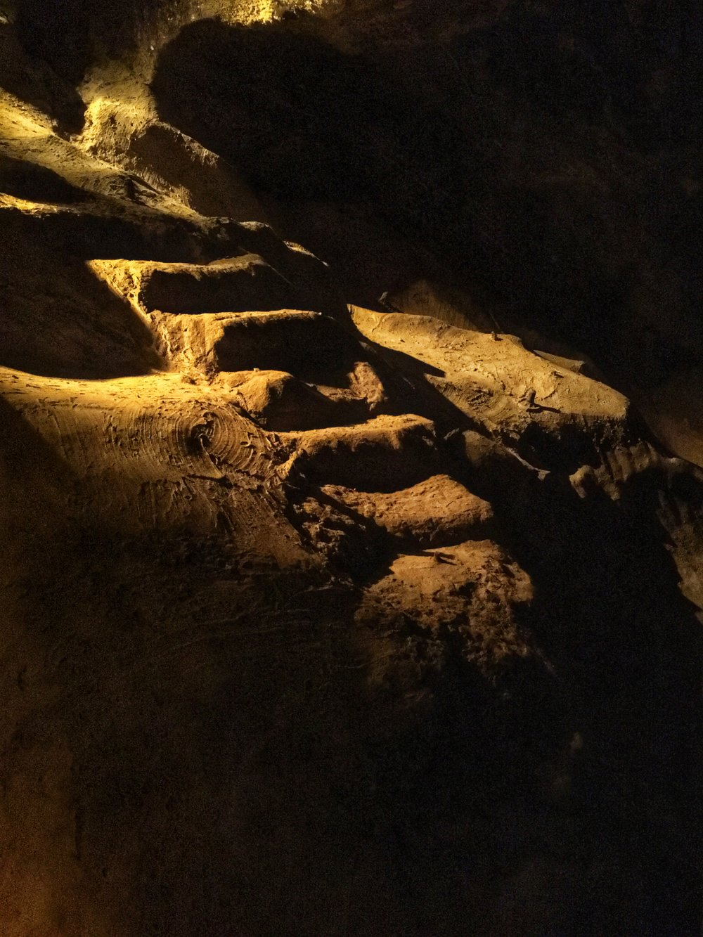 Salt Steps