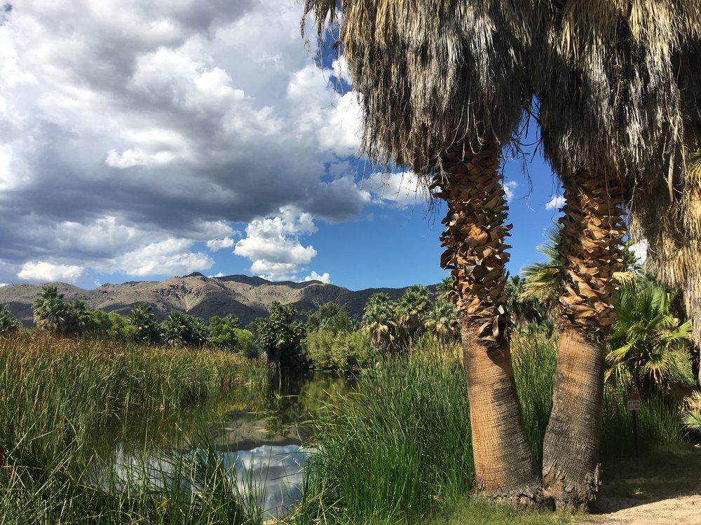 Aguas Calientes State Park