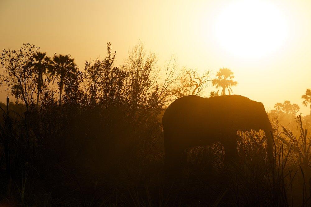 Malawi - Læs mere