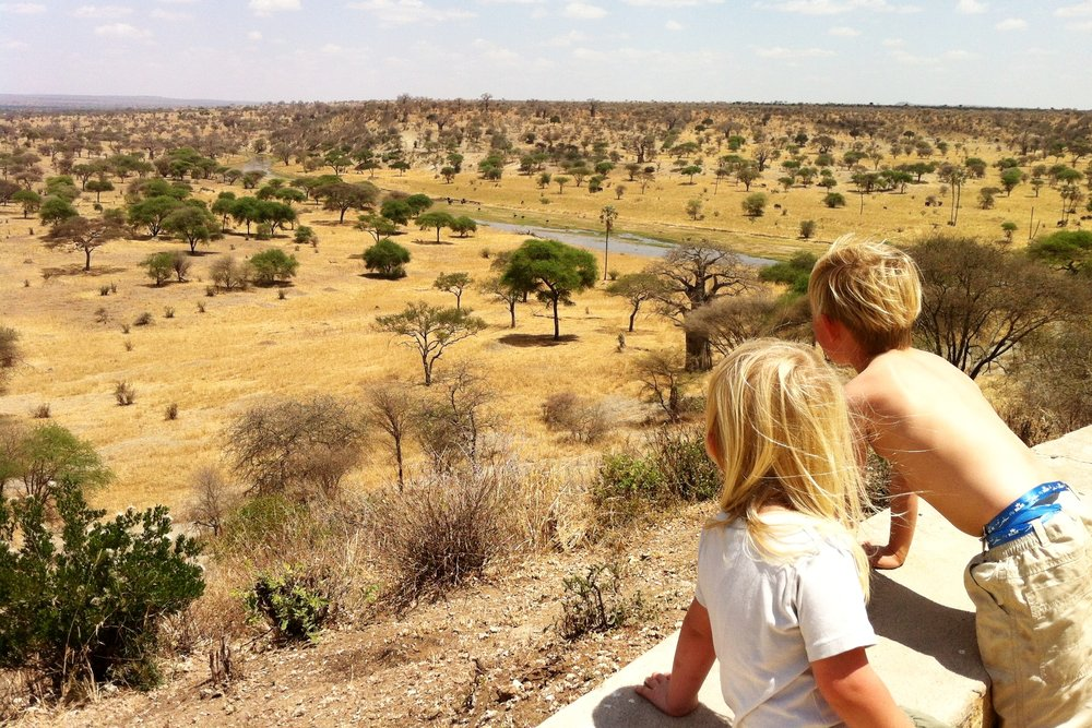 Tanzanias privat safari -
