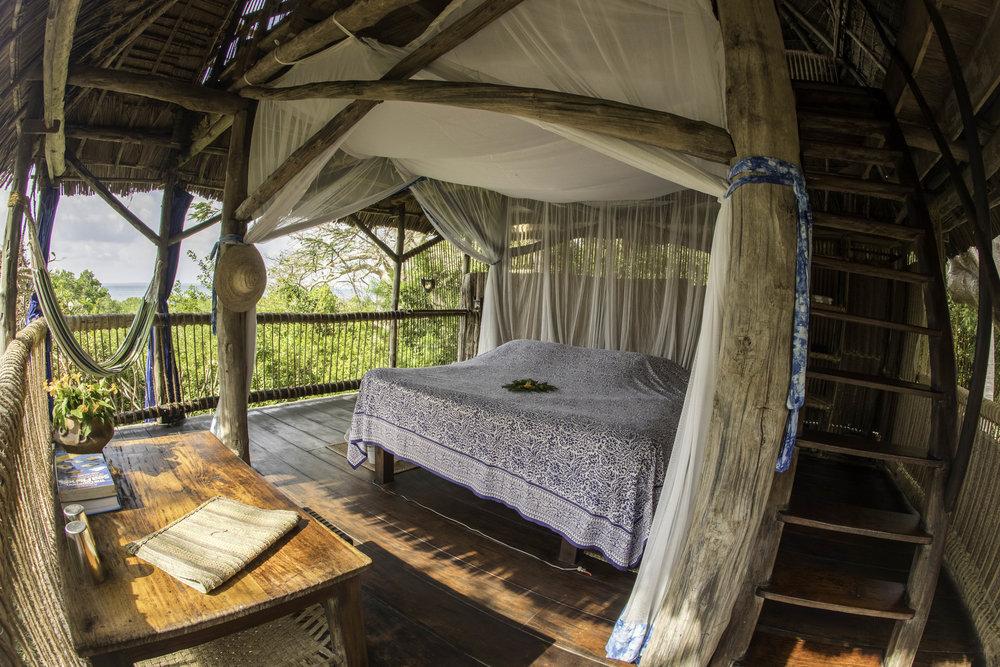 Pemba Island blandt baobabtræer og mangroven -