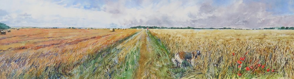 Is That A Mouse? Normandy: 24x93cm