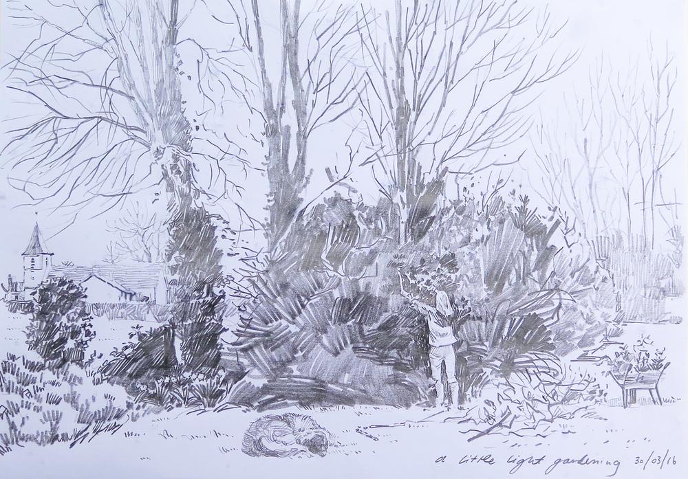 Light Gardening, Sketch